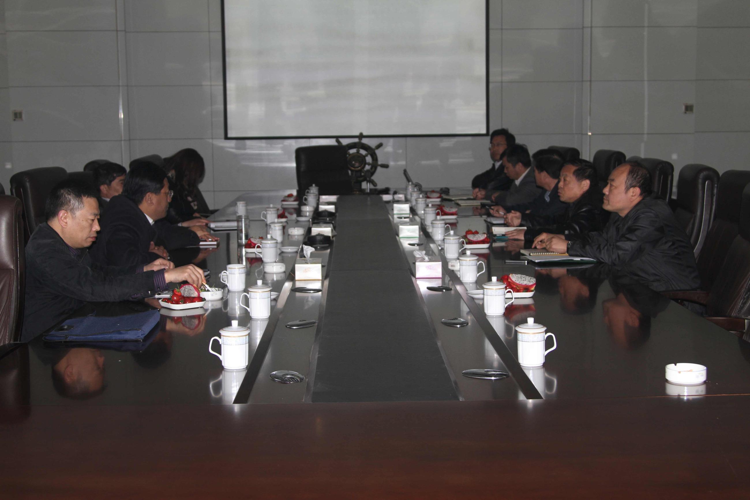 王吉能副市长一行到我公司调研